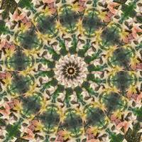 Leaves Memory Kaleidoscope 22