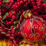 """Red ornament and berries"" by photogarry"