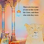 """""""The Lions, and Those Who Wish They Were"""" by kristie-elizabeth"""
