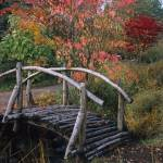 """Rustic Bridge in Autumn"" by Sunchaser"