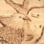 """eagle"" by annahenderson"