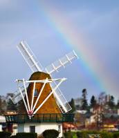 Rainbow Over the Windmill