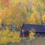 """The Lone Colorado Autumn Cabin"" by Santomarco"