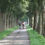 """Cycling on a Dutch lane"" by edmondholland"
