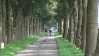 Cycling on a Dutch lane