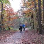 """""""Cycling in Autumn"""" by edmondholland"""