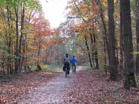 Cycling in Autumn