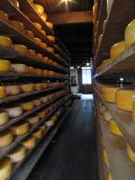 Cheese warehouse in Holland