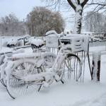 """Parked bikes in the snow"" by edmondholland"