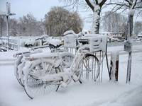 Parked bikes in the snow