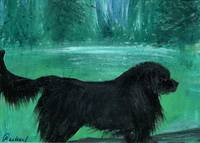 Newfie Playing in the Forest - Gunilla Wachtel