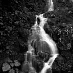 """""""Silky Falls (Black & White)"""" by stevenverlander"""