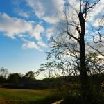 """""""Silhouette sky"""" by drakavai"""