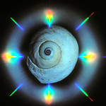 """moonsnail rainbow"" by KurtThorson"
