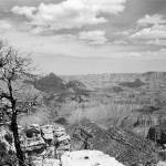 """Grand Canyon South Rim"" by ChrisHudson"