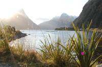New Zealand - Sun Setting on Milford Sound