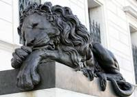 Bronze Lion at Corcoran Museum Washington DC