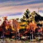"""Autumn Dream"" by bavosiphotoart"