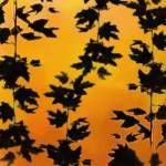 """Of Fall"" by amorellamoon"