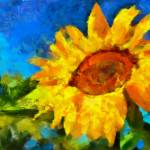 """The Sunflower"" by DiNovici"