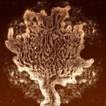 """Yggdrasil, The World Tree"" by amorellamoon"