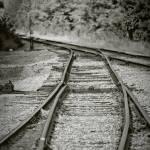 """Train Track Branch Line"" by jamiestarling"