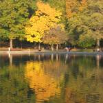 """""""Central Park Reflection"""" by alicia954"""