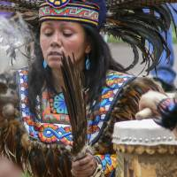 Santa Fe Shamana with Drum Art Prints & Posters by Allen Sheffield