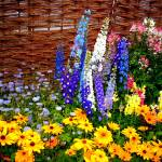 """Flowers 9 by Chip Fatula"" by njchip123"
