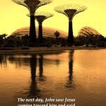 """John 1:29, Garden"" by sghomedeco"