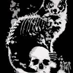 """skullycat"" by eremiticstudios"