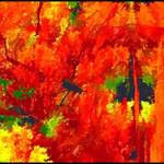 """Abstract Autumn Color"" by waynelogan"