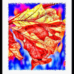 """Autumn Leaves Abstract"" by waynelogan"