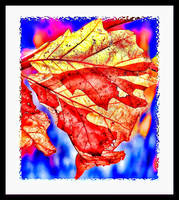 Autumn Leaves Abstract