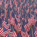 """American Flags"" by SplitWindow"