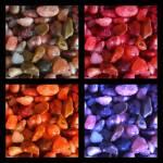 """""""Pebbles Quartet"""" by SplitWindow"""