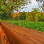 """park bench view"" by johngiroux"