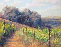 West Vineyard View