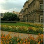 """Flowers in Luxembourg gardens"" by Basilea"