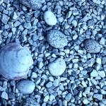 """Shells & Pebbles"" by r0ckstarbby"