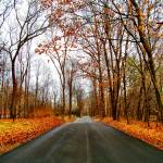 """Autumn Road"" by GBPhotography"