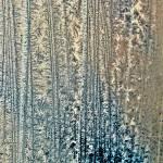 """""""Frost Tree Lines"""" by bavosiphotoart"""