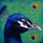 """Peacock 1 painting"" by kogi"