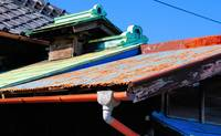 Traditional Multicoloured Roofs