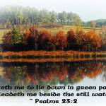 Beside The Still Waters With Verse