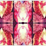 """Birthing Amethyst"" by ElevenMoonArt"