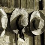 """Row of three hats"" by simonevanbergen"