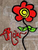 #Graffiti - Colored Rose