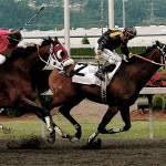 """Horse Racing Washington"" by jeffreysinnock"