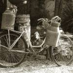 """""""Bicycle with Milk Churns"""" by simonevanbergen"""
